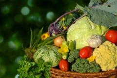 Warzywa w koszu Fotografia Royalty Free