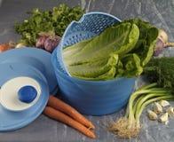Warzywa w plastikowym pucharze Obraz Stock