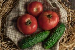 Warzywa w podwórku, pomidorach i ogórku na drewnianym tle, odgórny widok skład świezi warzywa w wieśniaku fotografia royalty free