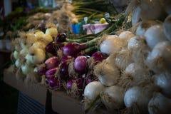 Warzywa w targowym Montreal Fotografia Stock