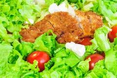 Warzywa z kurczakiem Odżywki bogaty karmowy cocept zdjęcie royalty free
