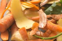 Warzywo łupy dla komposta fotografia stock