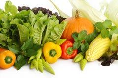 warzywo Fotografia Stock