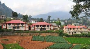Warzywo dom w Dalat i pola Obrazy Stock
