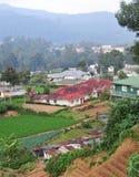 Warzywo dom w Dalat i pola Obrazy Royalty Free