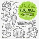 Warzywo graficzna ilustracja dla paleo zdrowej diety obrazy royalty free