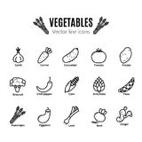 Warzywo ikony set Weganinów naturalni życiorys piktogramy Karczoch, asparagus, banatka, banany, winogrona, leeks, czosnek, imbir  Fotografia Stock