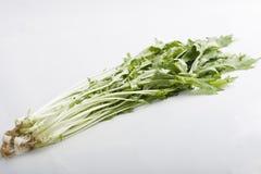 warzywo więdnie Zdjęcie Royalty Free