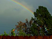 Somewhere Over the Rainbow in my Backyard. Was happy to see this colorful rainbow in my backyard, just right over the fence. Nice way to end the day royalty free stock image