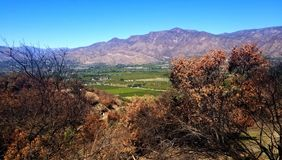 Ojai Valley April royalty free stock image