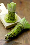 Wasabi Royalty Free Stock Images