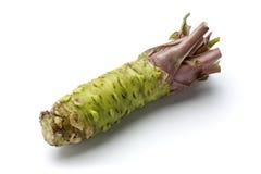 Wasabi. Raw wasabi isolated on white Royalty Free Stock Image