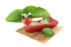 Wasabi with leaf and flower in a red bowl Stock Image