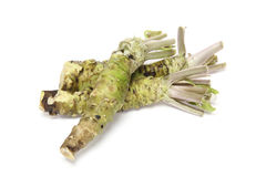 Wasabi in a white background Royalty Free Stock Photography