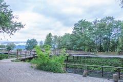 Wasabibauernhof in Nagano, Japan Lizenzfreie Stockfotos