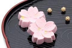 Японская кондитерская, сладкое wasanbon стоковые фотографии rf