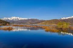 Wasatch山反射在犹他湖 免版税库存照片