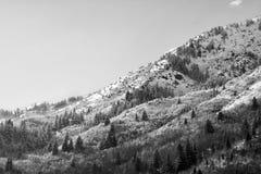 Wasatch-Bergspitzen in Nord-Utah in der Winterzeit Lizenzfreie Stockbilder