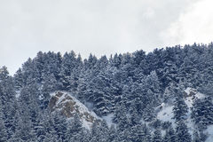 Wasatch Mountain peaks in northern utah in the wintertime Royalty Free Stock Photography