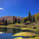 Wasatch Rocky Mountains on a bright fall day with pond and algae in the foreground and trees turning autumn colors in the backgrou. View of the Wasatch Rocky Royalty Free Stock Photo