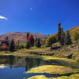 Wasatch Skaliste góry na jaskrawym spadku dniu z stawem i algach w obraca jesień drzewach i przedpolu barwią w backgrou Zdjęcie Royalty Free