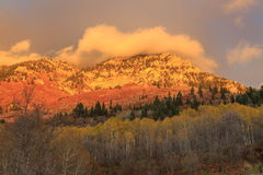 Wasatch sunset with aspens, Utah. Royalty Free Stock Image