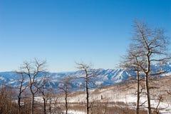 Wasatchbergketen in Parkstad, Utah Stock Foto