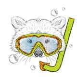 Waschbär in einer Maske für das Tauchen Freizeit in Meer hippie lizenzfreie abbildung