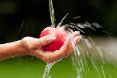 Waschender Apfel Lizenzfreies Stockbild