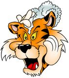 Waschender Tiger Lizenzfreies Stockbild
