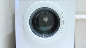 Waschmaschinenwäschekleidung, der Fluss des Schaums des Waschpulvers auf der Glastür stock video footage