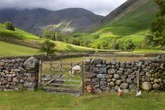 Wasdale głowa, Cumbria Obrazy Royalty Free