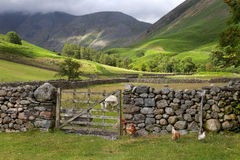 Wasdale Head, Cumbria Royalty Free Stock Images