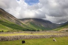 Wasdale Head, The Lake District. Stone walls at Wasdale Head, Cumbria, the Lake District, England Royalty Free Stock Images