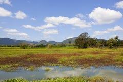 Wasgamuwa nationaal park het Lake District Royalty-vrije Stock Afbeeldingen
