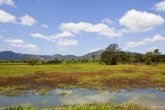 Wasgamuwa park narodowy Lakeland Obrazy Royalty Free