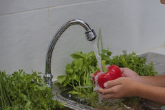 Wash fruits and vegetables Stock Image
