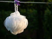 Wash tassel Royalty Free Stock Images