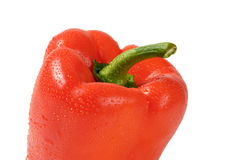 Washed bell pepper Stock Image