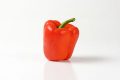 Washed bell pepper Royalty Free Stock Photo