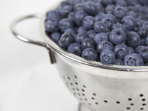 Washed Blueberries Stock Image