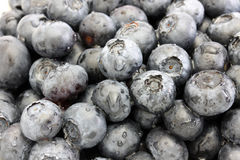 Washed Blueberries Closeup. Extreme Closeup of Washed Blueberries royalty free stock images