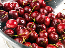 Washed cherries Stock Images
