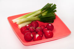Washed and cleaned radishes on the plastic plate Royalty Free Stock Image