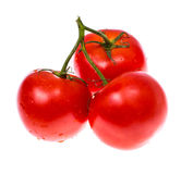 Washed fresh ripe tomatoes with water droplets Royalty Free Stock Photo