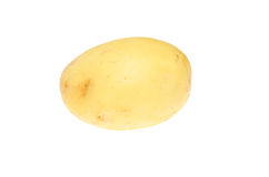 Washed new potato Royalty Free Stock Image