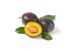 Washed plums Royalty Free Stock Photography