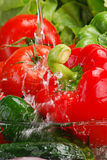 Washed raw vegetables Royalty Free Stock Photography