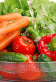 Washed raw vegetables. With stream of water Royalty Free Stock Photography