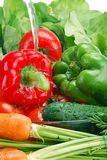 Washed raw vegetables. With stream of water Stock Photo